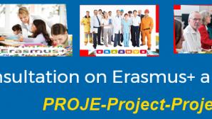 Erasmus+ Programı Ara Değerlendirmesi Anketi